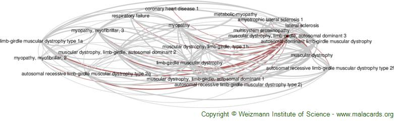 Diseases related to Muscular Dystrophy, Limb-Girdle, Autosomal Dominant 3