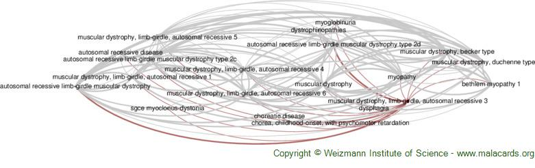 Diseases related to Muscular Dystrophy, Limb-Girdle, Autosomal Recessive 3
