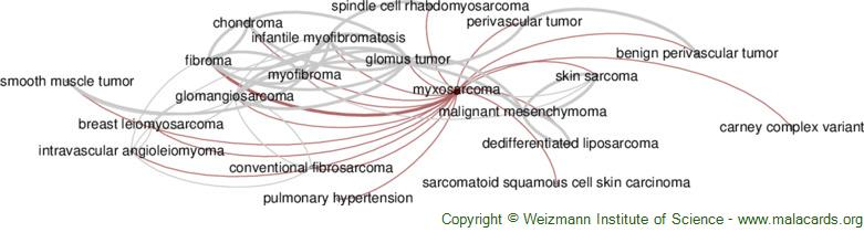 Diseases related to Myxosarcoma