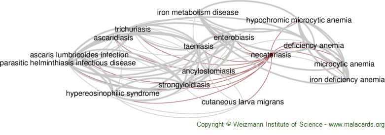 Diseases related to Necatoriasis