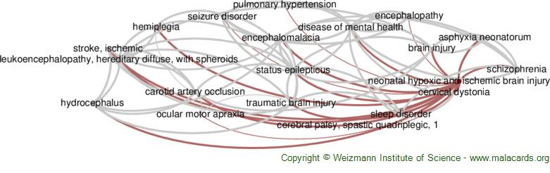 Diseases related to Neonatal Hypoxic and Ischemic Brain Injury