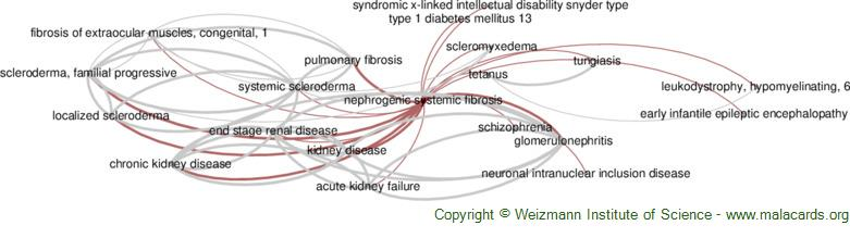 Diseases related to Nephrogenic Systemic Fibrosis