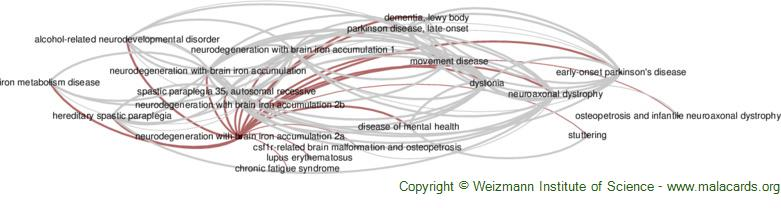 Diseases related to Neurodegeneration with Brain Iron Accumulation 2a