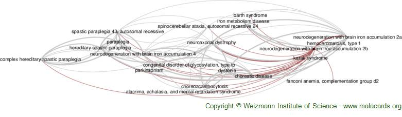 Diseases related to Neurodegeneration with Brain Iron Accumulation 2b