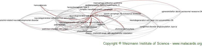 Diseases related to Neurodegeneration with Brain Iron Accumulation 3