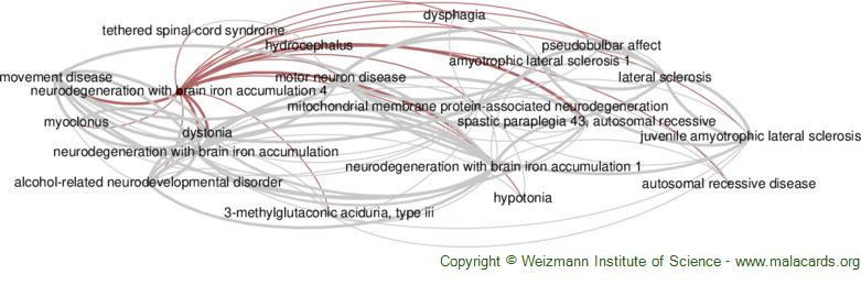 Diseases related to Neurodegeneration with Brain Iron Accumulation 4