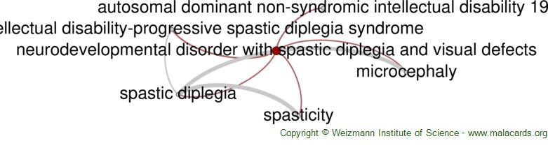 Diseases related to Neurodevelopmental Disorder with Spastic Diplegia and Visual Defects