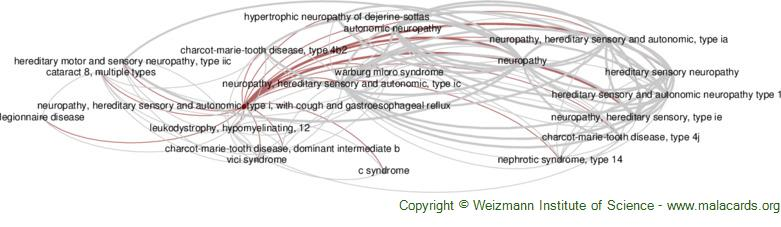 Diseases related to Neuropathy, Hereditary Sensory and Autonomic, Type I, with Cough and Gastroesophageal Reflux