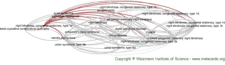 Diseases related to Night Blindness, Congenital Stationary, Type 1a