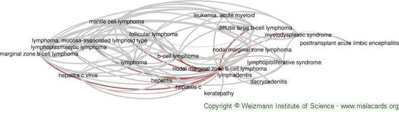 Diseases related to Nodal Marginal Zone B-Cell Lymphoma