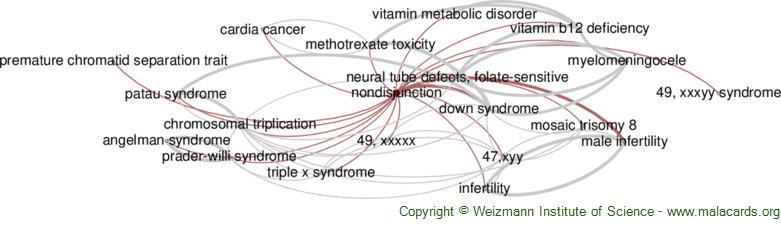 Diseases related to Nondisjunction