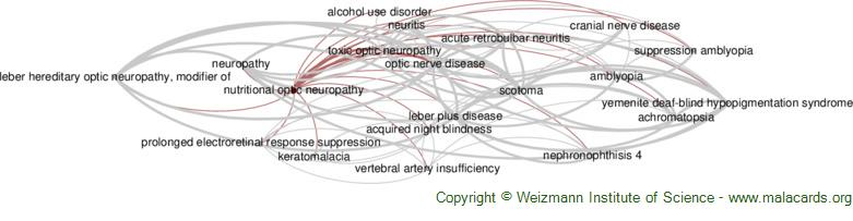 Diseases related to Nutritional Optic Neuropathy