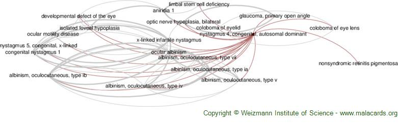 Diseases related to Nystagmus 4, Congenital, Autosomal Dominant