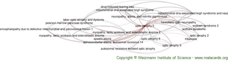 Diseases related to Optic Atrophy 5