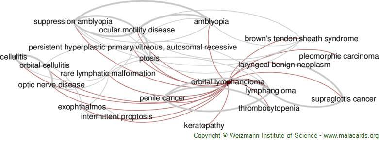 Diseases related to Orbital Lymphangioma