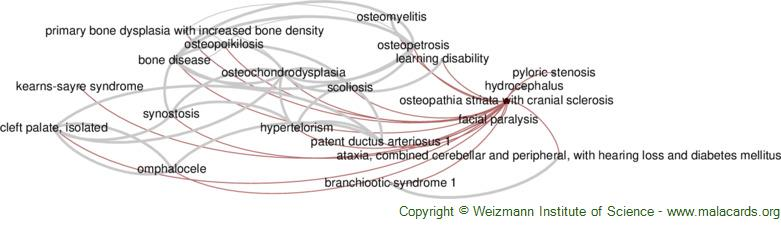Diseases related to Osteopathia Striata with Cranial Sclerosis
