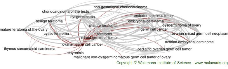 Diseases related to Ovarian Germ Cell Cancer