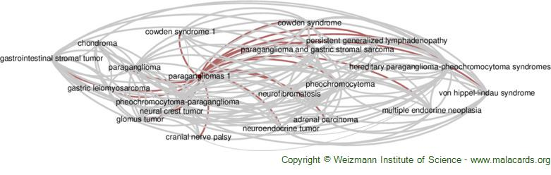 Diseases related to Paragangliomas 1