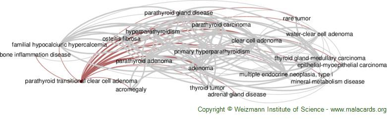 Diseases related to Parathyroid Transitional Clear Cell Adenoma