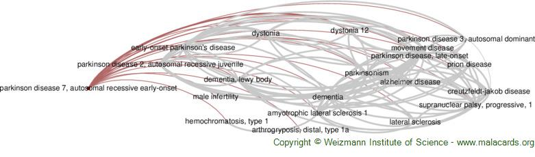 Diseases related to Parkinson Disease 7, Autosomal Recessive Early-Onset
