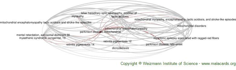 Diseases related to Parkinson Disease, Mitochondrial