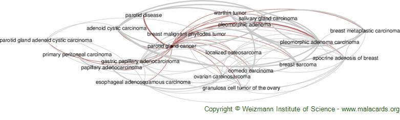 Diseases related to Parotid Gland Cancer