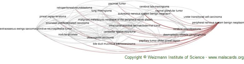 Diseases related to Peripheral Nervous System Benign Neoplasm