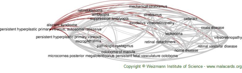 Diseases related to Persistent Hyperplastic Primary Vitreous, Autosomal Recessive