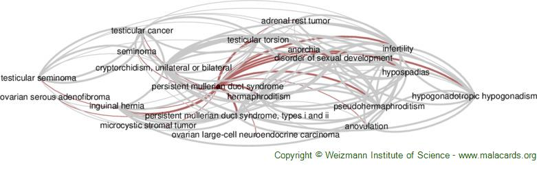 Diseases related to Persistent Mullerian Duct Syndrome