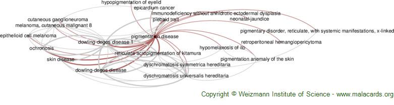 Diseases related to Pigmentation Disease