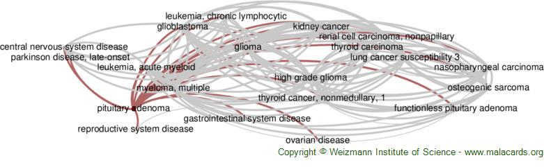 Diseases related to Pituitary Adenoma