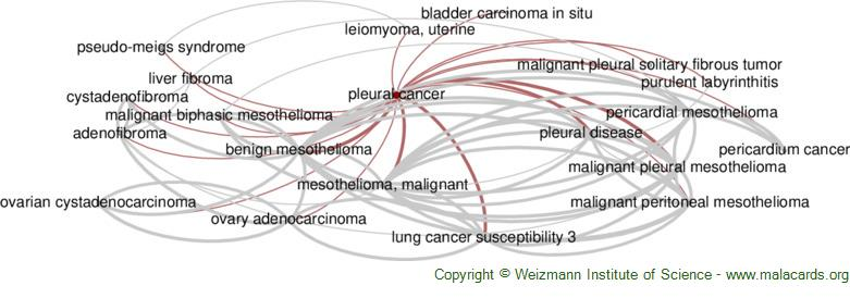 Diseases related to Pleural Cancer