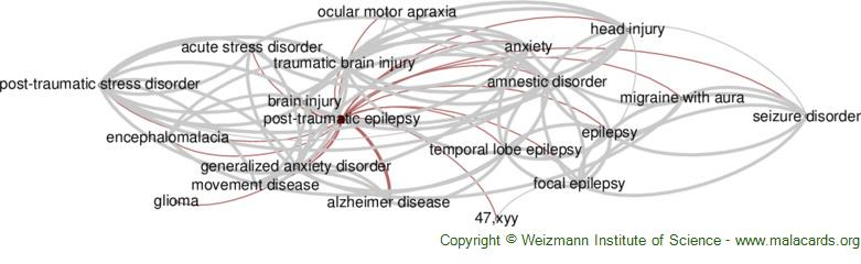 Diseases related to Post-Traumatic Epilepsy