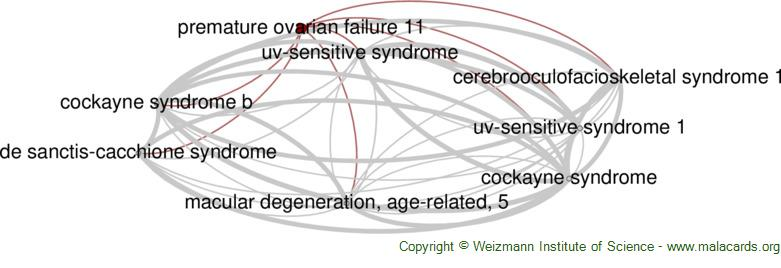 Diseases related to Premature Ovarian Failure 11