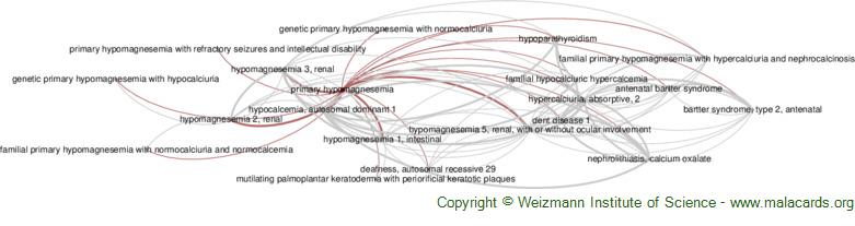 Diseases related to Primary Hypomagnesemia
