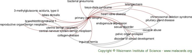 Diseases related to Primary Optic Atrophy