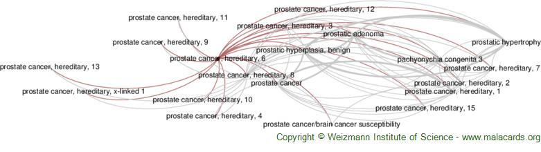Diseases related to Prostate Cancer, Hereditary, 6