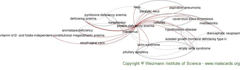 Diseases related to Protein-Deficiency Anemia