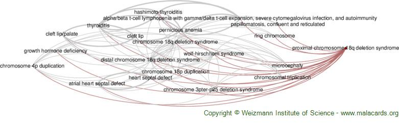 Diseases related to Proximal Chromosome 18q Deletion Syndrome