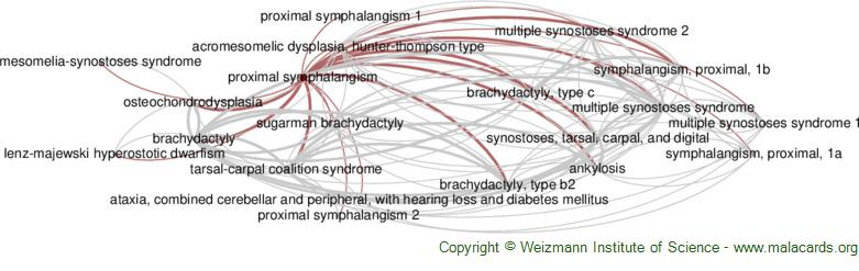 Diseases related to Proximal Symphalangism