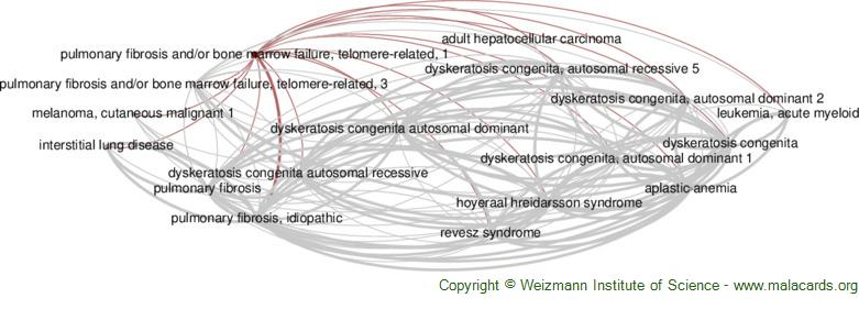 Diseases related to Pulmonary Fibrosis and/or Bone Marrow Failure, Telomere-Related, 1