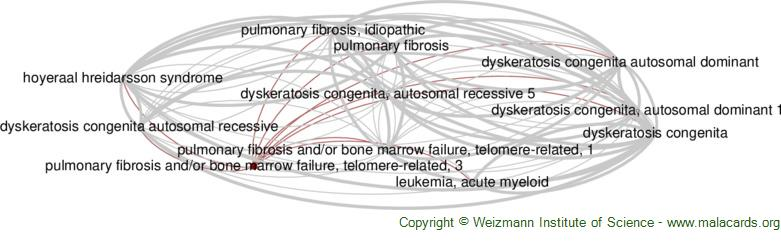Diseases related to Pulmonary Fibrosis and/or Bone Marrow Failure, Telomere-Related, 3
