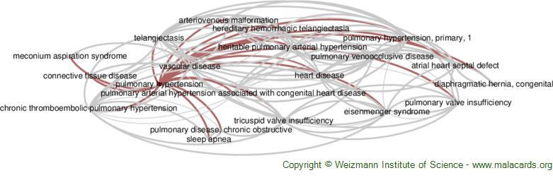 Diseases related to Pulmonary Hypertension