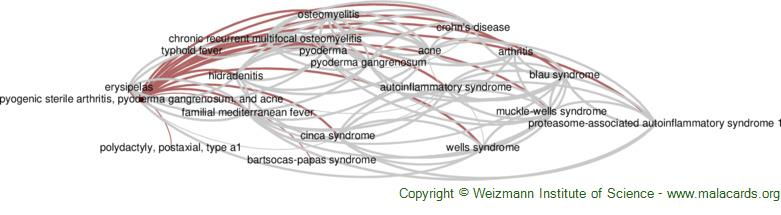 Diseases related to Pyogenic Sterile Arthritis, Pyoderma Gangrenosum, and Acne