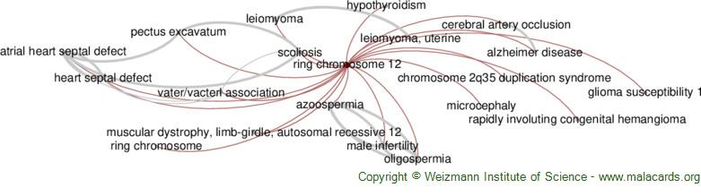 Diseases related to Ring Chromosome 12