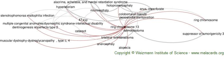 Diseases related to Ring Chromosome 13