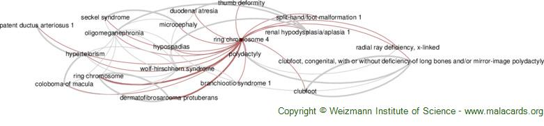 Diseases related to Ring Chromosome 4