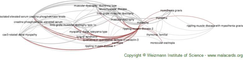 Diseases related to Rippling Muscle Disease 2