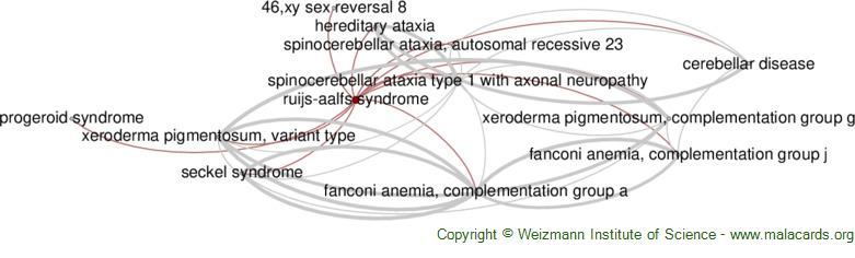 Diseases related to Ruijs-Aalfs Syndrome