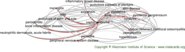 Diseases related to Sapho Syndrome